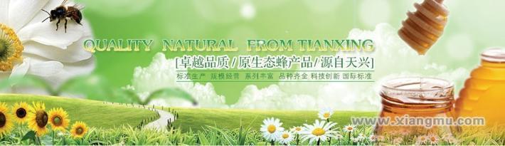 王氏天兴蜂蜜:中国蜂产品消费者满意十佳产品_2