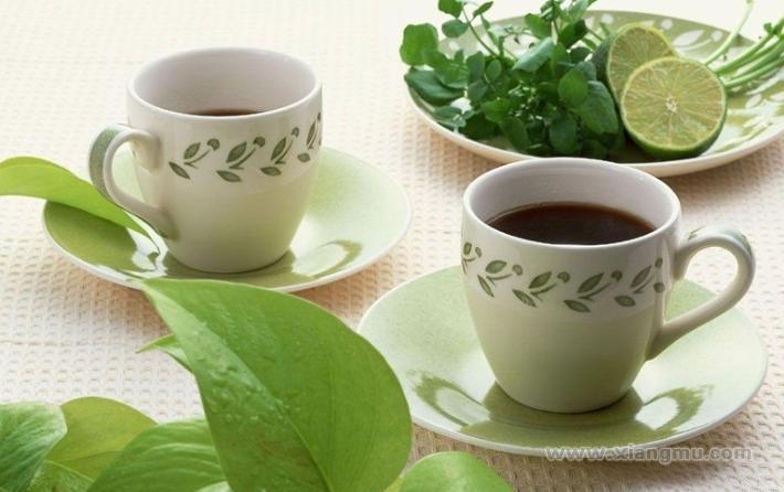 文新茶叶加盟_3