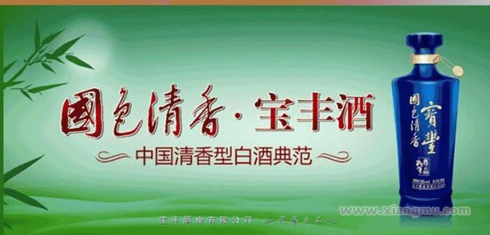 宝丰酒加盟代理全国招商_1