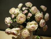 安雅康美家花卉