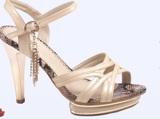 大东女鞋加盟怎么样_大东女鞋加盟优势_大东女鞋加盟条件_3