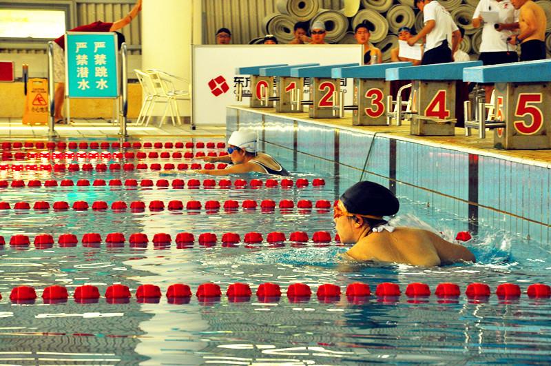 """东方证券第五届运动会——""""东证期货""""杯游泳比赛(图)_2"""