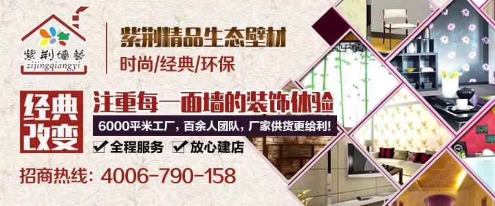 紫荆墙艺招商加盟