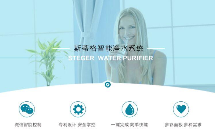 斯蒂格净水器招商加盟,斯蒂格净水器加盟费用,加盟详情_4