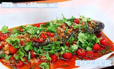 柳江正宗纸包鱼,巫山纸包鱼重新麻辣风12年