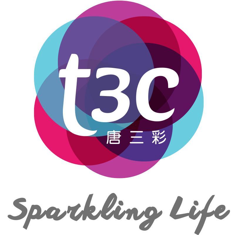 T3C皮肤管理