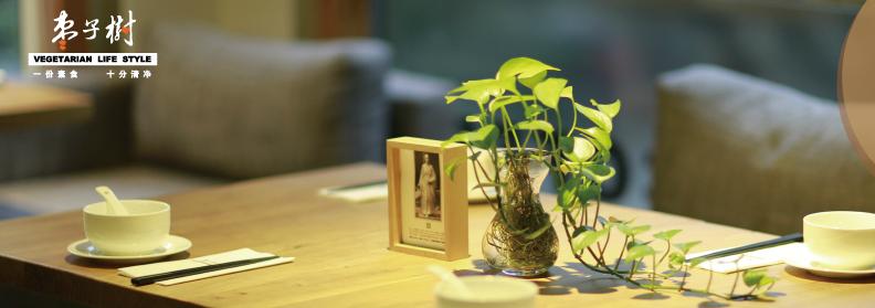 枣子树素食餐厅加盟_5