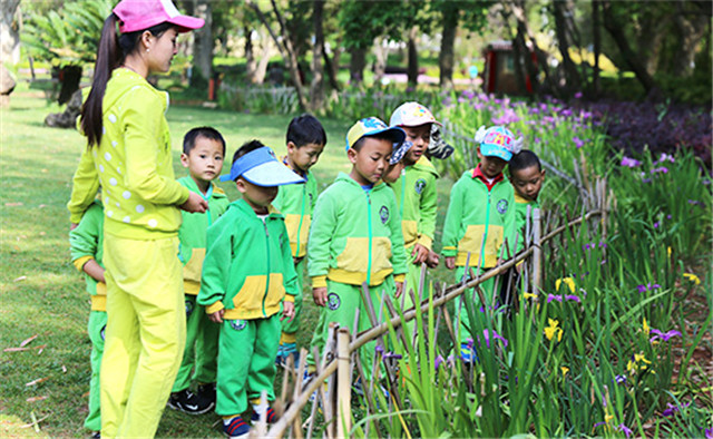 香港艾乐国际幼儿园加盟_香港艾乐国际幼儿园加盟优势_香港艾乐国际幼儿园加盟电话_3