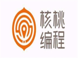 北京聪明核桃教育科技有限公司