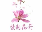 江苏省妇联好有限公司