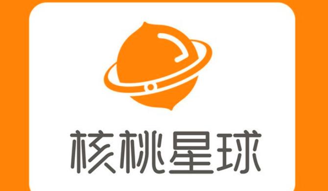 核桃星球编程加盟_2