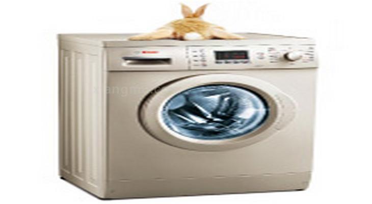 博世洗衣机加盟_2