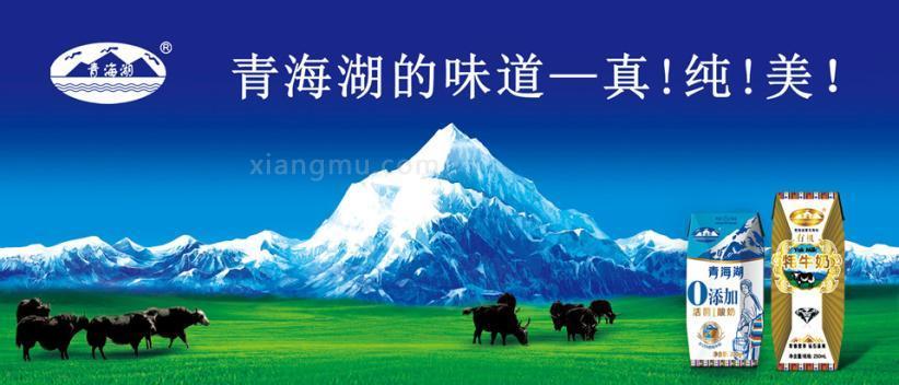 青海湖乳业加盟_1